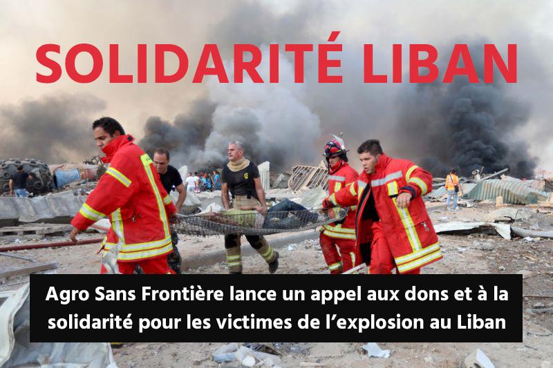 LIBAN - ASF lance un appel aux dons